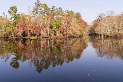 Photograph - Waccamaw River In November by MM Anderson