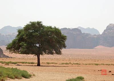 Digital Art - Wadi Rum by David Jenkins