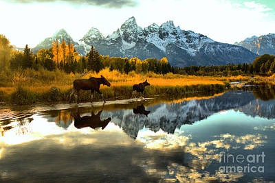 Photograph - Wading Through The Tetons by Adam Jewell
