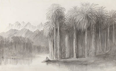 Drawing - Wady Feiran, Peninsula Of Mt. Sinai by Edward Lear