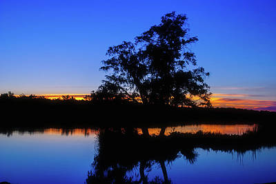 Photograph - Wagardu Lake, Yanchep National Park by Dave Catley
