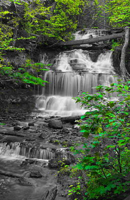 Old Masters Royalty Free Images - Wagner Falls BWG Royalty-Free Image by Daniel Thompson