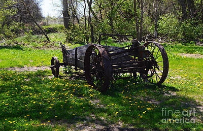 Photograph - Wagon And Dandelions by Renie Rutten