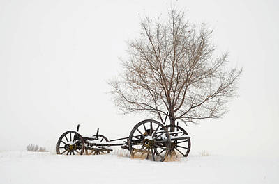 Photograph - Wagon In The Snow by Dave Rennie