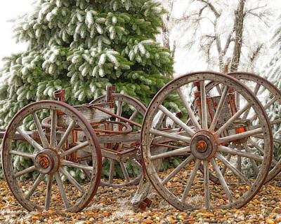 Photograph - Wagon In Winter by Amanda Smith