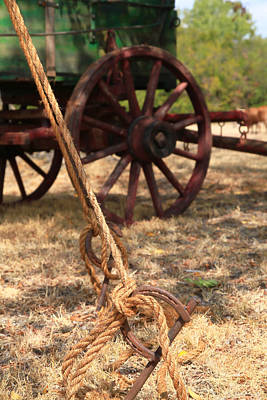 Wheel Thrown Photograph - Wagon Stake by Toni Hopper