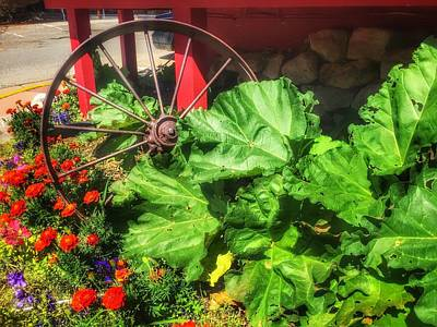 Photograph - Wagon Wheel Garden by Debra Martz