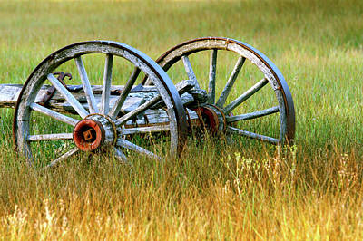 Photograph - Wagon Wheels by Melanie Alexandra Price