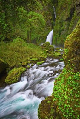 Photograph - Wahclella Falls by Darren White