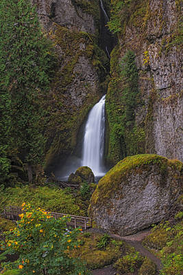 Photograph - Wahclella Falls From Above by Loree Johnson