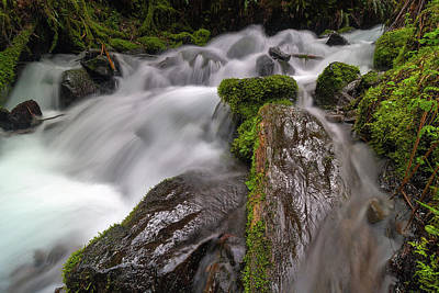 Photograph - Wahkeena Creek by David Gn
