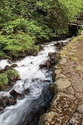 Photograph - Wahkeena Falls - 3 by Hany J