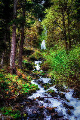 Photograph - Wahkeena Falls by Harry Spitz