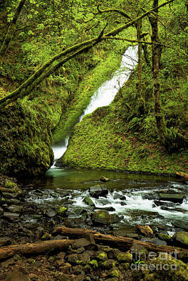 Photograph - Wahkeena Falls by Jon Burch Photography