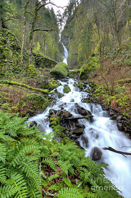 Wahkeena Falls Oregon Waterfall Print by Dustin K Ryan
