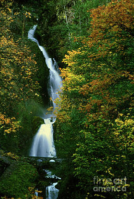 Wahkeena Falls Waterfall Art Print
