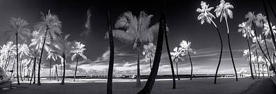 Infra-red Photograph - Waikiki Beach Contrasts by Sean Davey