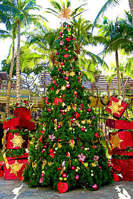 Photograph - Waikiki Christmas Tree by Robert Meyers-Lussier