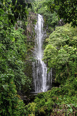 Photograph - Wailua Falls On The Road To Hana, Maui, Hawaii by Peter Dang