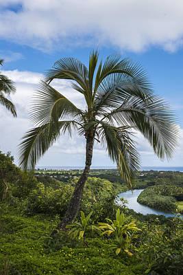 Photograph - Wailua River by Robert Potts