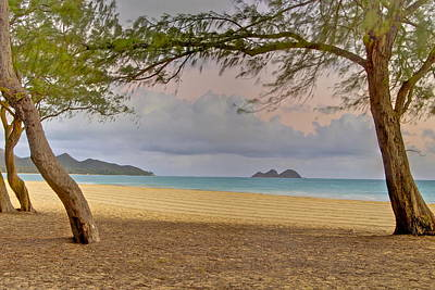Waimanalo Beach Art Print by Michael Peychich