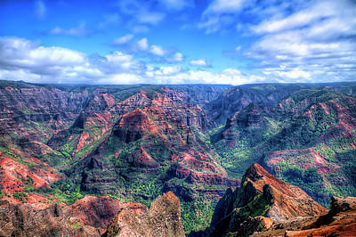 Photograph - Waimea Canyon by Brad Granger