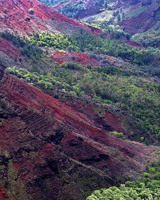 Photograph - Waimea Canyon II by Kenneth Campbell