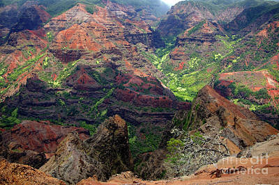 Photograph - Waimea Canyon- Kauai- H2 by Rick Bures