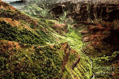 Photograph - Waimea Canyon by M G Whittingham