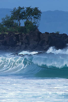 Art Print featuring the photograph Waimea Shorebreak by Stan and Anne Foster