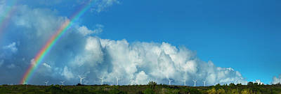 Photograph - Waimea Wind Fans by Sean Davey