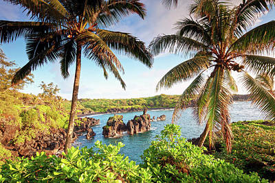 Lush Foliage Photograph - Wainapanapa, Maui, Hawaii by M.M. Sweet