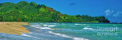 Photograph - Wainiha Bay And Beach Kauai Hawaii 309020049 by Tom Jelen