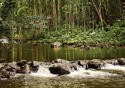 Photograph - Waipio River by Pamela Walton