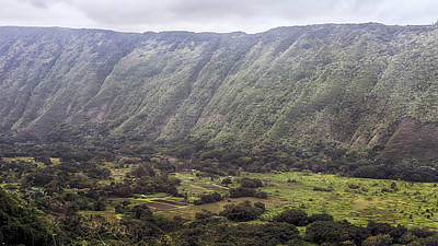 Photograph - Waipio Valley Farms by Susan Rissi Tregoning