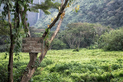 Photograph - Waipio Valley Road Rules by Susan Rissi Tregoning