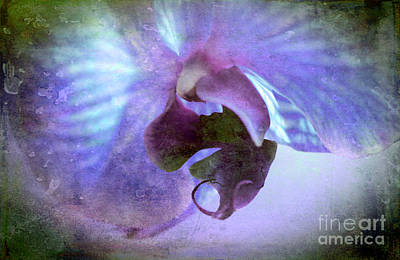 Orchid Digital Art - Wait For Me by Krissy Katsimbras