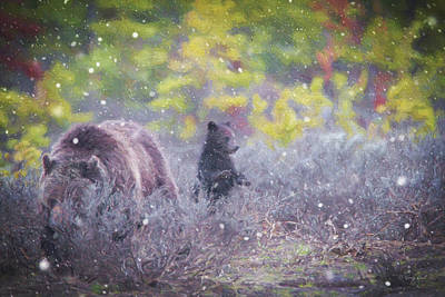 Photograph - Wait Mom I Heard Something by Gerry Sibell