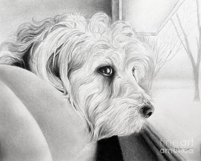 Drawing - Waiting by Becky West