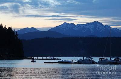 Waiting For Fireworks At Alderbrook Art Print by Terri Thompson