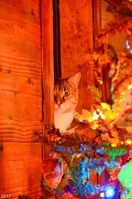 Photograph - Waiting For Santa by Lisa Wooten