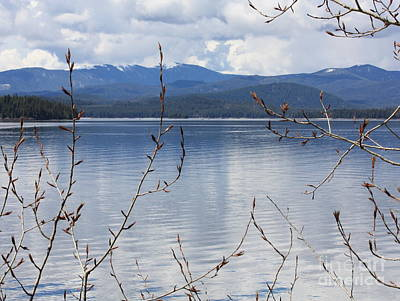 Photograph - Waiting For Spring At Priest Lake by Carol Groenen