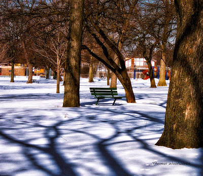 Park Scene Mixed Media - Waiting For Spring by Thomas Woolworth