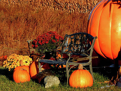 Photograph - Waiting For The Great Pumpkin by Wild Thing
