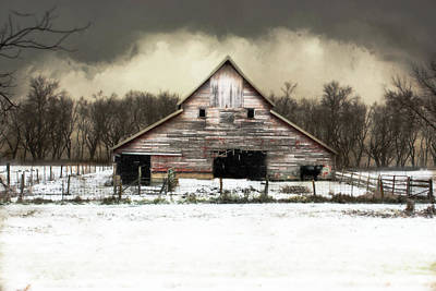 Photograph - Waiting For The Storm To Pass by Julie Hamilton