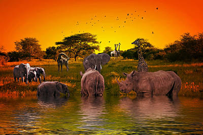 Photograph - Waiting Her Turn At The Watering Hole by Diane Schuster