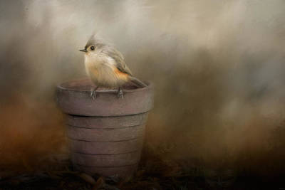 Titmouse Painting - Waiting On Spring Songbird Art by Jai Johnson