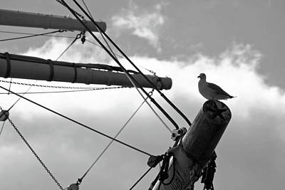 Photograph - Waiting To Set Sail - East River, New York by Pamela Critchlow