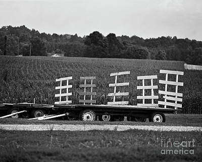 Photograph - Waiting Wagons by Patrick M Lynch