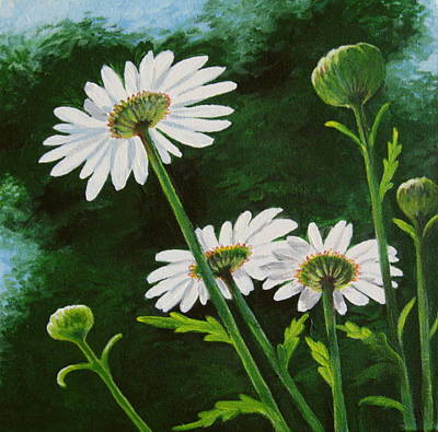 Daiseys Painting - Waking Daisies by Sharon Marcella Marston